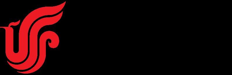 Air_China_Logo.svg.png
